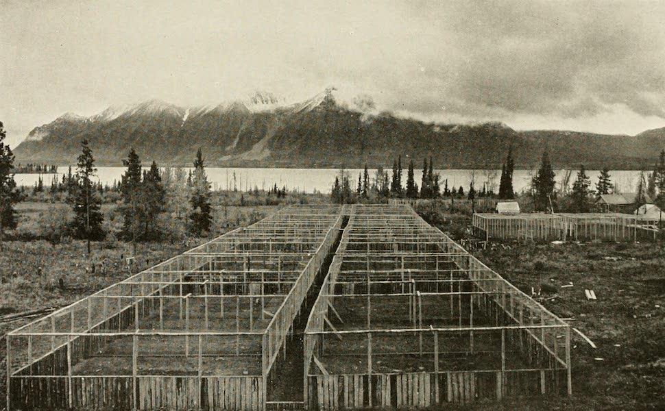 Alaska, Our Beautiful Northland of Opportunity - A Fox Farm (1919)