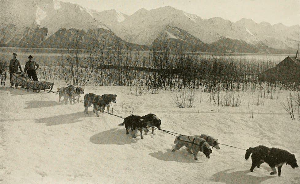 """Alaska, Our Beautiful Northland of Opportunity - """"Mush on, You Huskies"""" (1919)"""