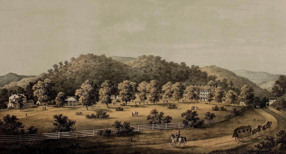 Album of Virginia - Blue Sulpur Spring (1858)