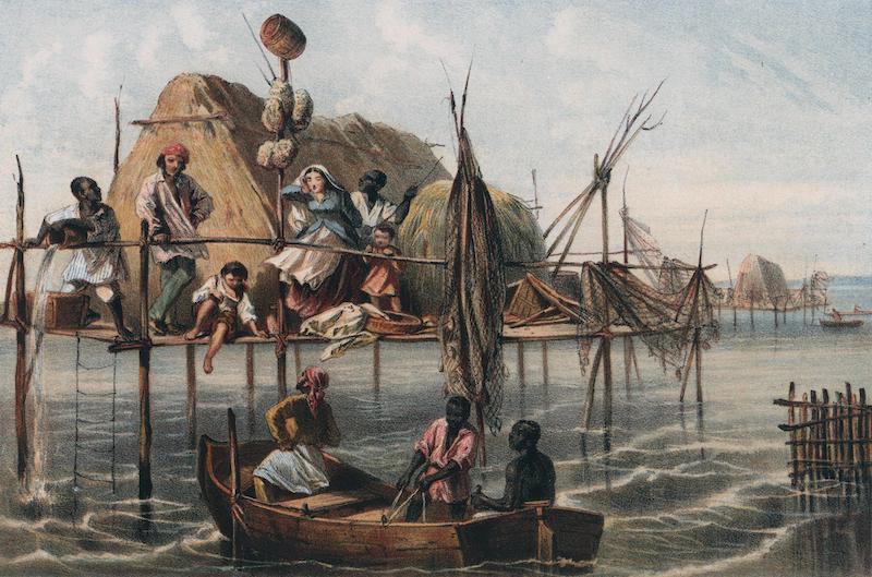 Album Pintoresco de la Isla de Cuba - Vivienda de los Pescadores de Esponjas. Bahia de Nuevitas (1855)