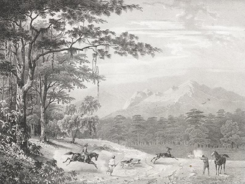 Album Pittoresque de la Fregate La Thetis et de la Corvette L'Esperance - Chasse au Cerf dans les Montagnes de Manivelles (Iles Lucon, Philippines) (1828)
