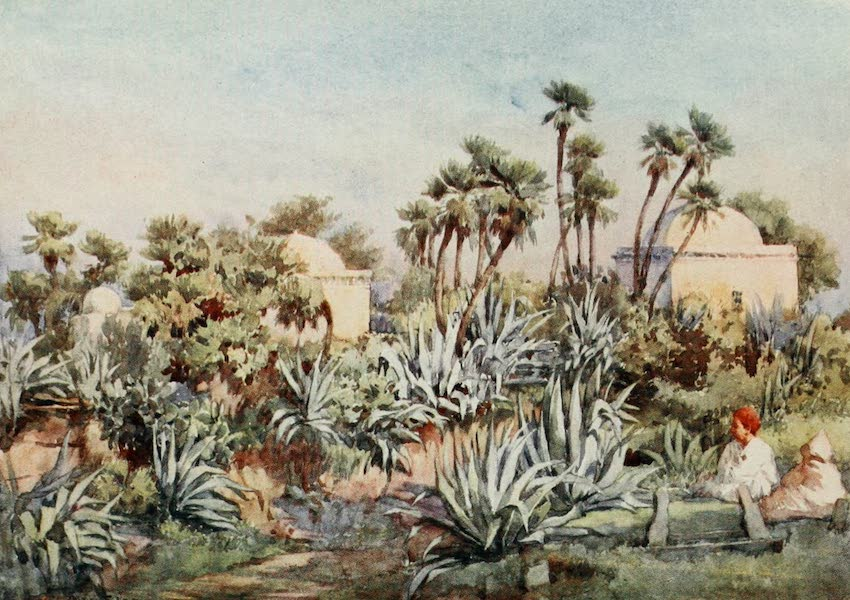 Algeria and Tunis, Painted and Described - Koubba of Sidi Noumann, Bouzareah (1906)