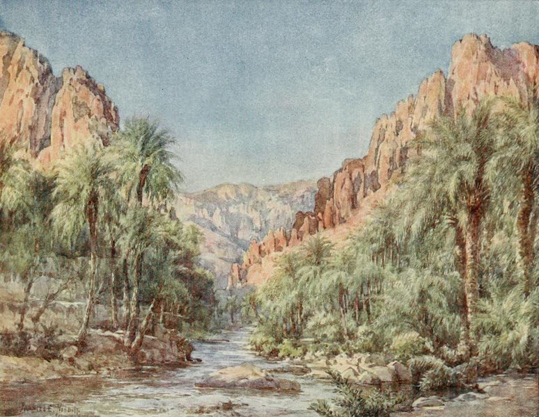 Algeria and Tunis, Painted and Described - The Gates of the Desert (1906)