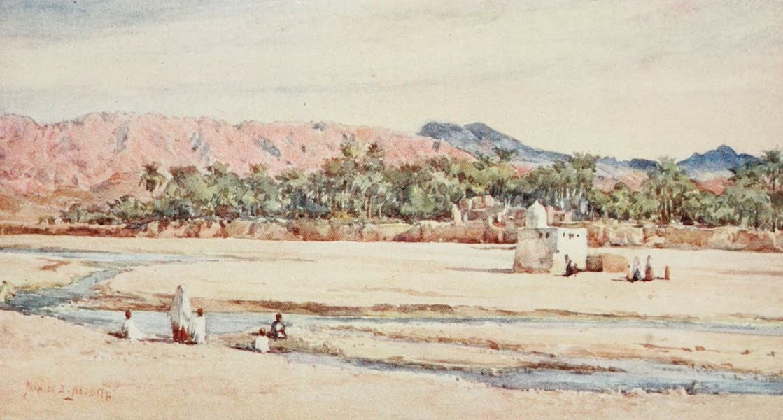 Algeria and Tunis, Painted and Described - A River of the Sahara (1906)