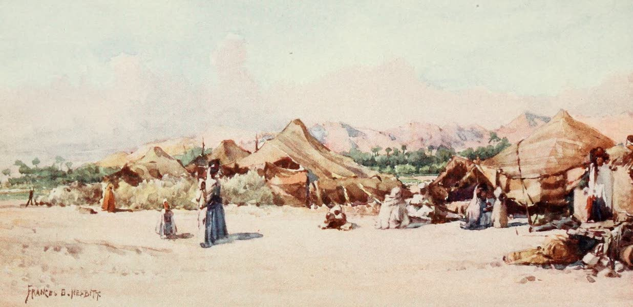 Algeria and Tunis, Painted and Described - A Nomad Camp (1906)