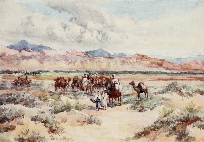 Algeria and Tunis, Painted and Described - A Caravan on the Sahara (1906)