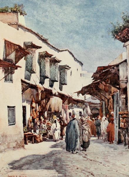 Algeria and Tunis, Painted and Described - Souk el Belat, Tunis (1906)