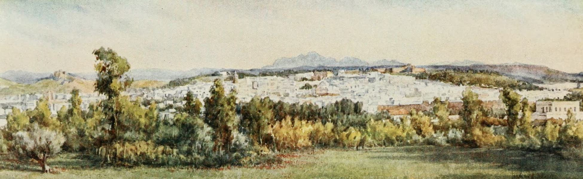 Tunis from the Belvedere
