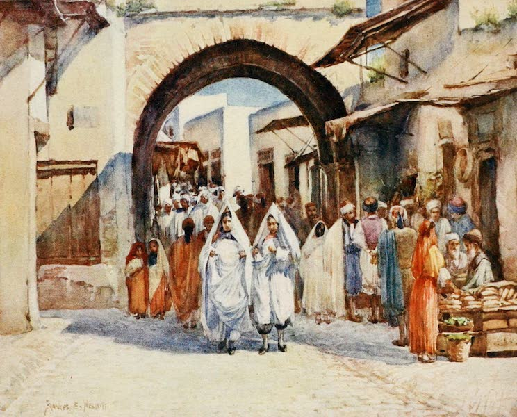 Algeria and Tunis, Painted and Described - Souk el Hout, Tunis (1906)