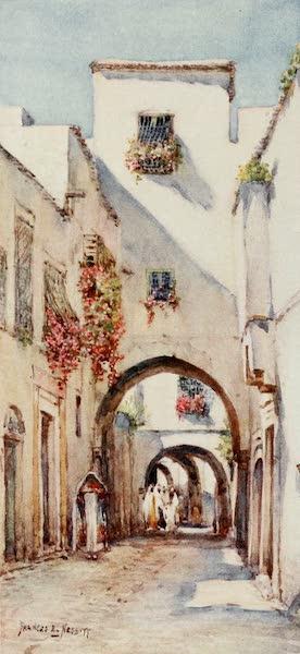 Algeria and Tunis, Painted and Described - Rue Tourbet el Bey, Tunis (1906)