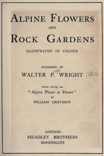 English - Alpine Flowers and Rock Gardens