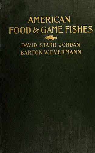 Aquatint & Lithography - American Food and Game Fishes