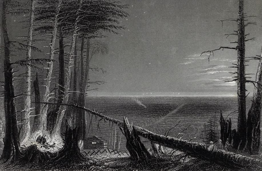 American Scenery Vol. I - A Forest on Lake Ontario (1840)