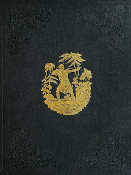 American Scenery Vol. II - Front Cover (1840)