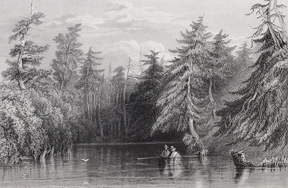 American Scenery Vol. II - Barhydt's Lake (near Saratoga) (1840)