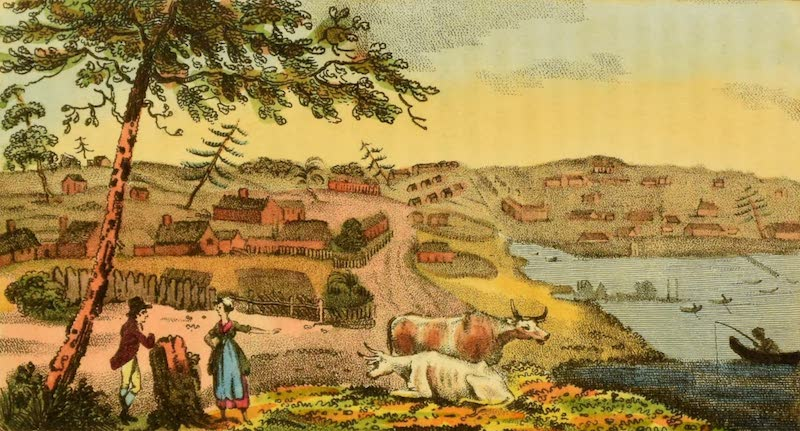 An Account of a Voyage to New South Wales - South View of Sydney (1803)