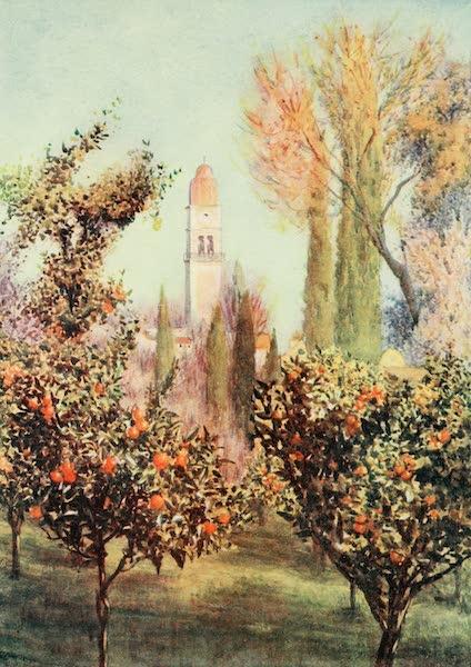 An Artist in Corfu - Sta. Barbara Potamo (1911)