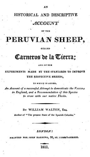 Aquatint & Lithography - An Historical and Descriptive Account of the Peruvian Sheep