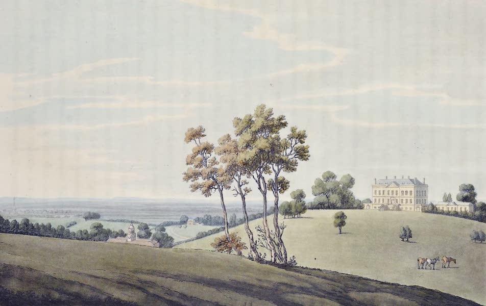 An History of the Principal Rivers of Great Britain Vol. 1 - Buscot Park (1794)