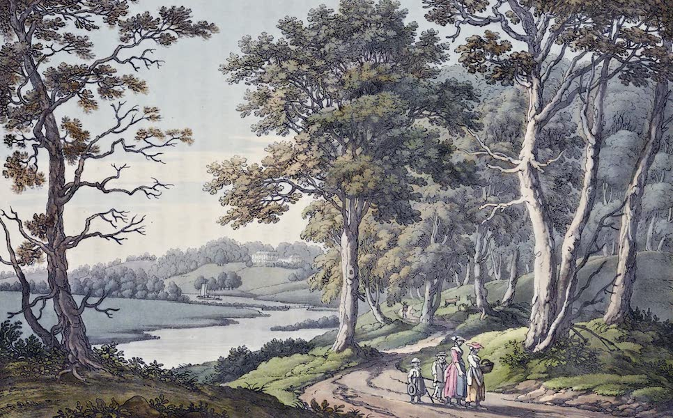 An History of the Principal Rivers of Great Britain Vol. 1 - View of Nuneham, from the wood (1794)