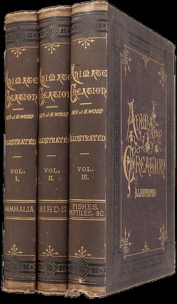Animate Creation Vol. 3 - Book Display I (1885)