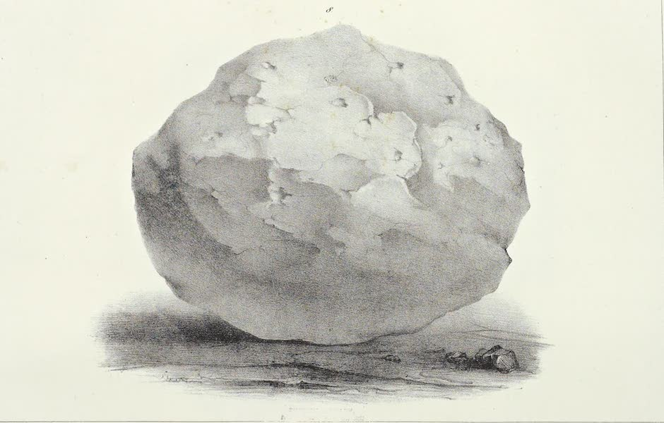 Antiquites Mexicaines - 1er Expedition - Planche VIII (1844)