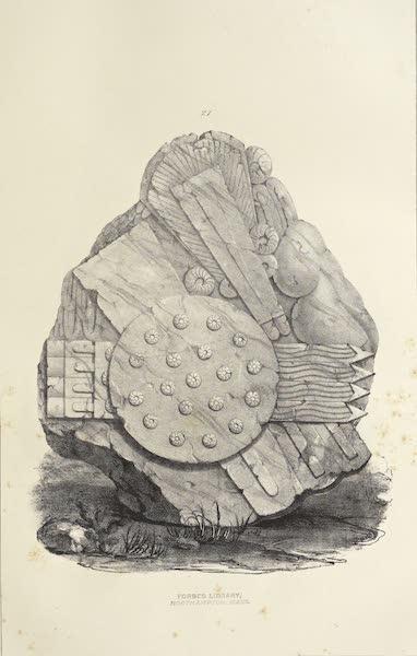 Antiquites Mexicaines - 1er Expedition - Planche XIX (1844)