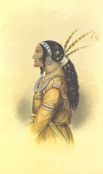 Arctic Searching Expedition Vol. 1 - Kutcha-Kutchin Warrior (1851)