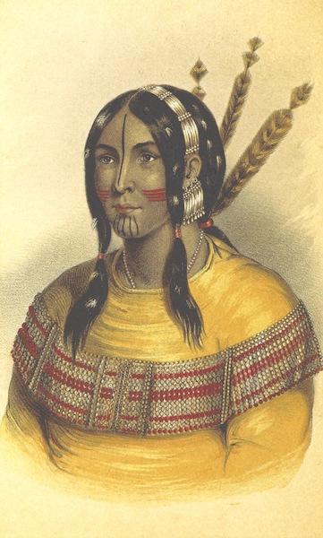 Arctic Searching Expedition Vol. 1 - Saviah, Chief of the Kutcha-Kutchin (1851)