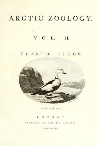 Natural History - Arctic Zoology Vol. 2