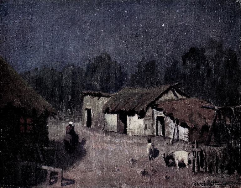 A Moonlight Night in Central Argentina