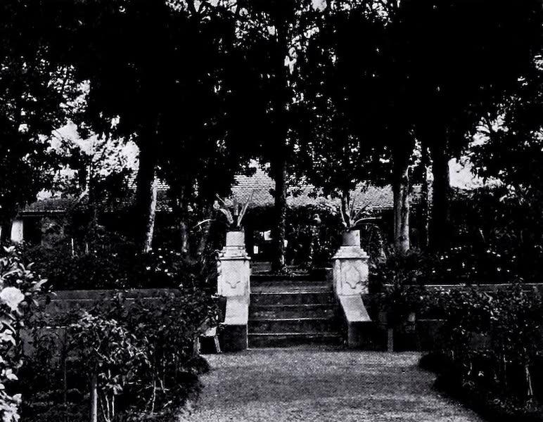 Argentina, Past and Present - An Entre Rios Garden (1914)