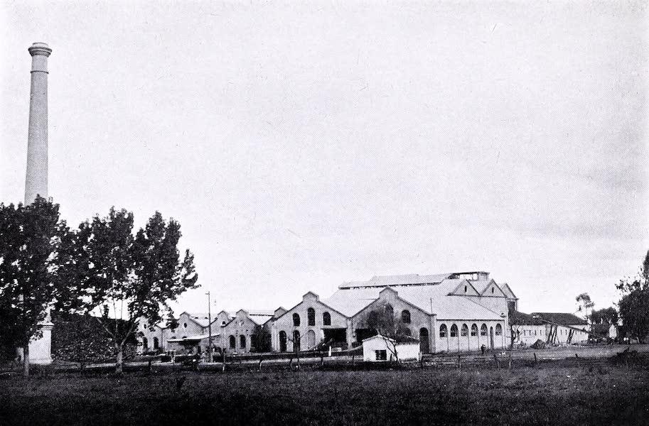 Argentina, Past and Present - A Tucuman Sugar Factory (1914)