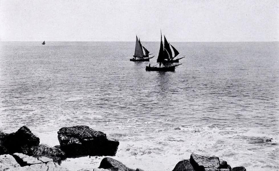 Argentina, Past and Present - Fishing Boats : Mar Del Plata (1914)
