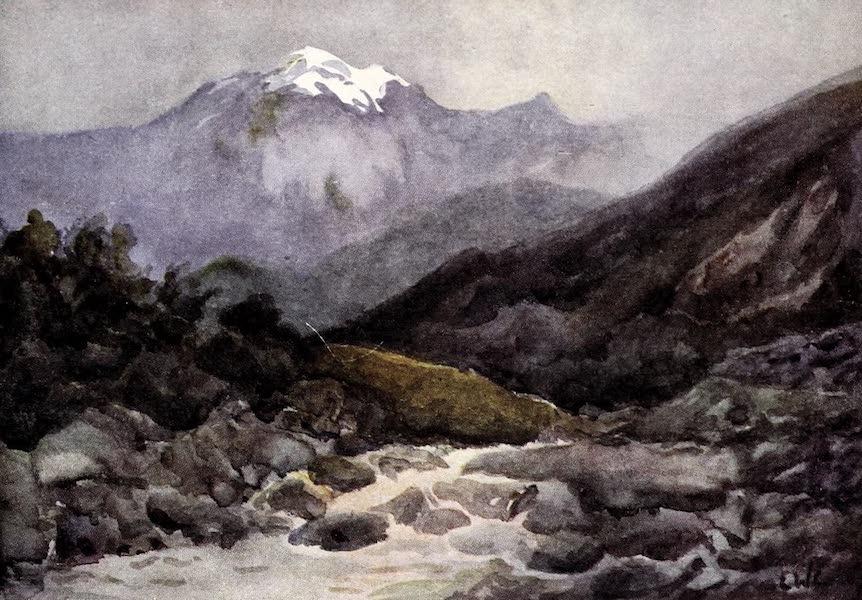 Argentina, Past and Present - Lake Alumeni District : Rapids near Moquhue (1914)