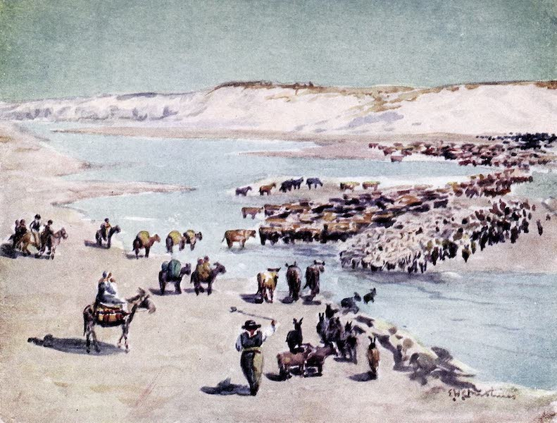 Argentina, Past and Present - Chilenos Trekking Across the Frontier (1914)