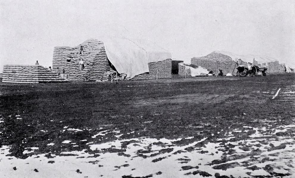 Argentina, Past and Present - Wheat Piles At Ochandio Station (1914)