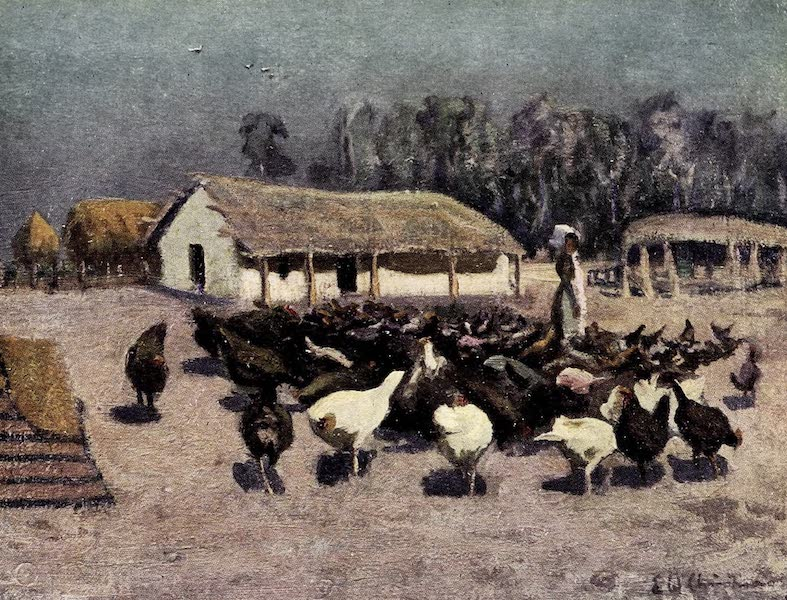 Argentina, Past and Present - A Summer's Day on a Chicken Farm (1914)