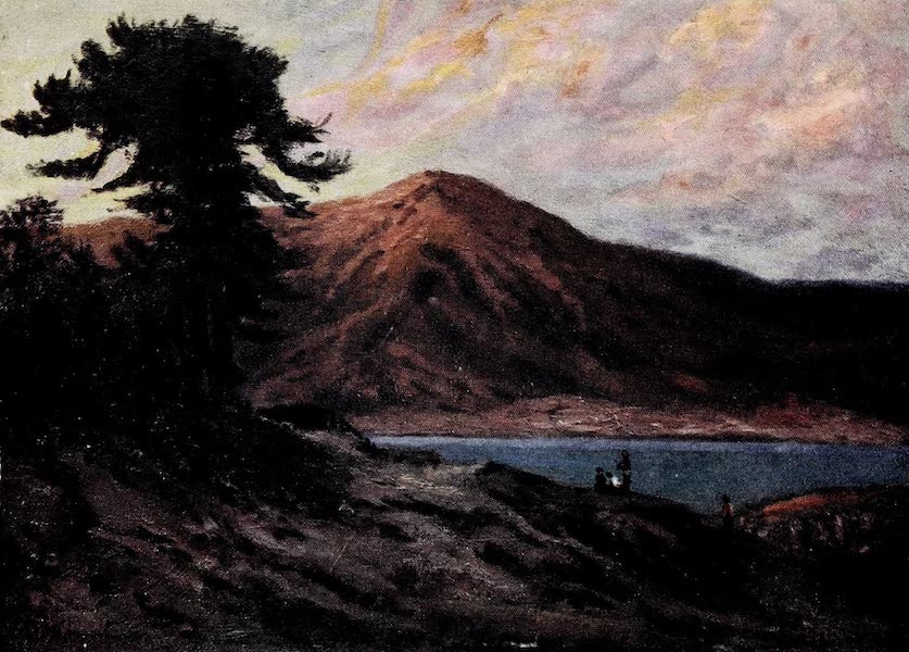 Argentina, Past and Present - Pines on Lake Alumine (1914)