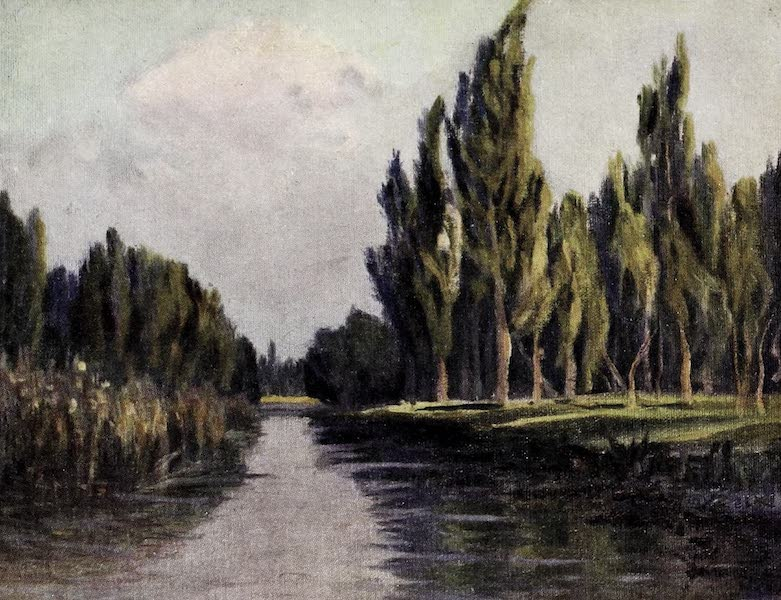 Argentina, Past and Present - Poplar Trees of the Parana (1914)