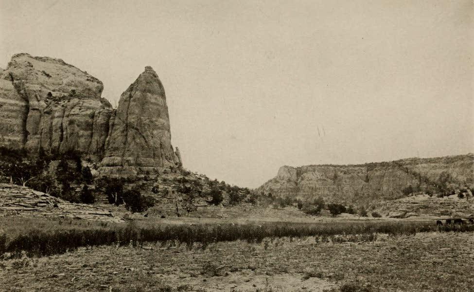 Arizona, The Wonderland - Bubbling Spring Branch of Sagie Canyon, on the Navaho Reservation, Arizona (1917)