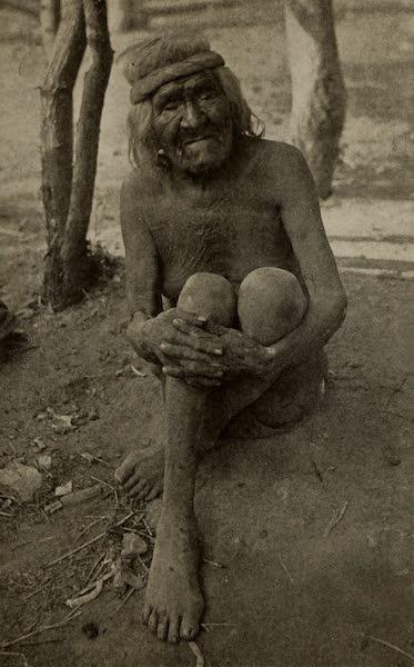 Arizona, The Wonderland - An Aged Havasupai Indian (1917)