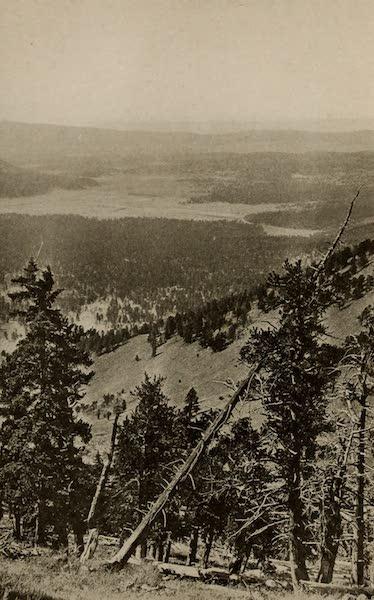Arizona, The Wonderland - In the Coconino National Forest, Arizona (1917)