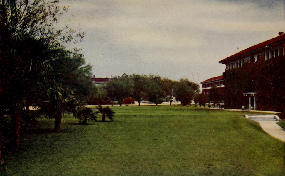 Arizona, The Wonderland - A Portion of the Campus, University of Arizona, Tuscan (1917)