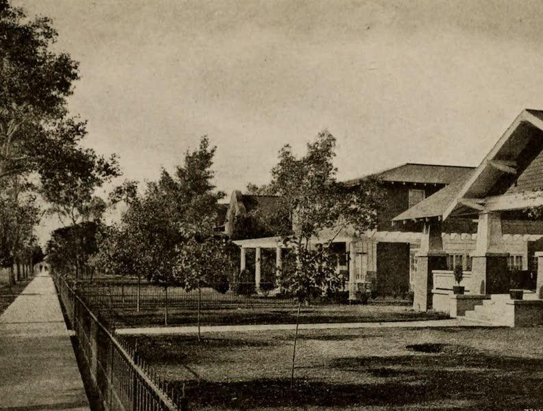 Arizona, The Wonderland - A Group of Homes, Douglas, Arizona (1917)