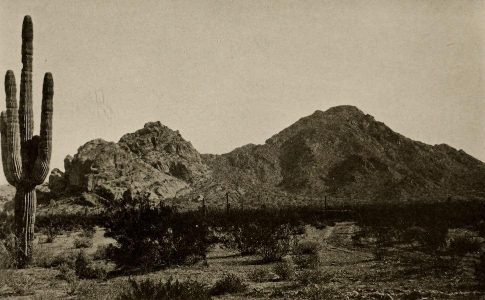 Arizona, The Wonderland - Camel Back Mountain (1917)