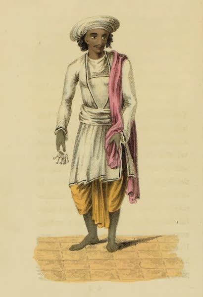 Barburdar, or Steward