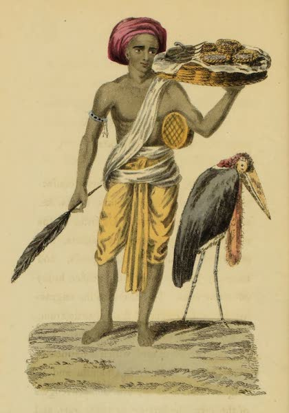 Asiatic Costumes - Native of Bengal, selling Sweetmeats (1828)
