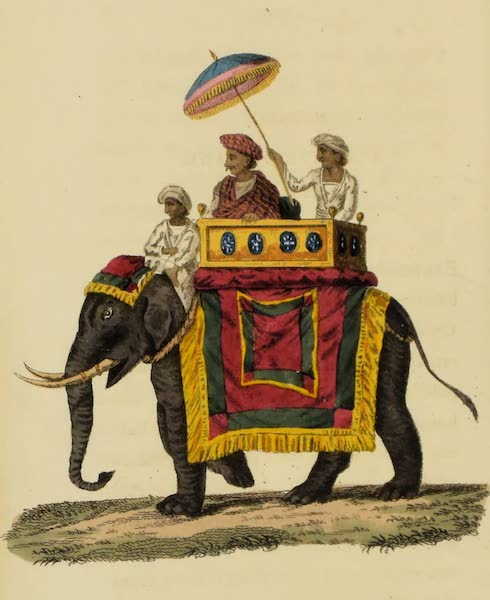 Asiatic Costumes - A Native of Rank on an Elephant (1828)