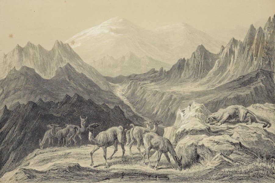 Atlas de Historia fisica y Politica de Chile Vol. 1 - Vista del Volcan de San Fernando Leon Cazando Guancos (1854)